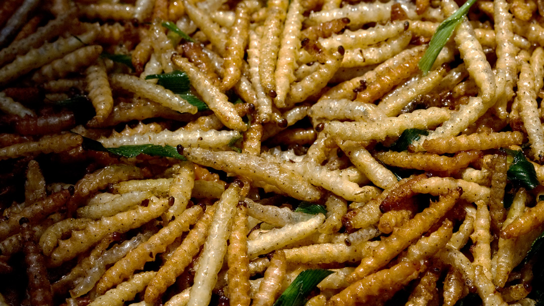 Deep Fried Mixed Worms, Yunan, China